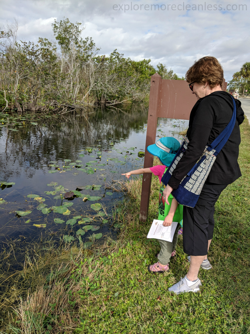 everglades with kids hikes