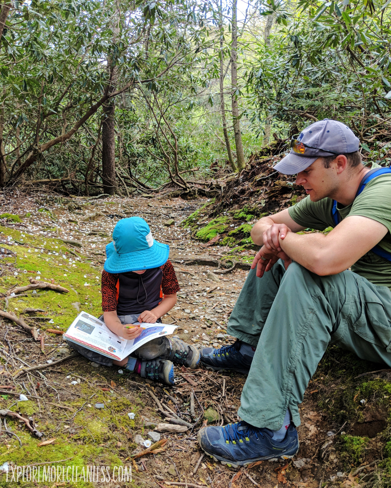 great smoky mountains national park junior ranger program
