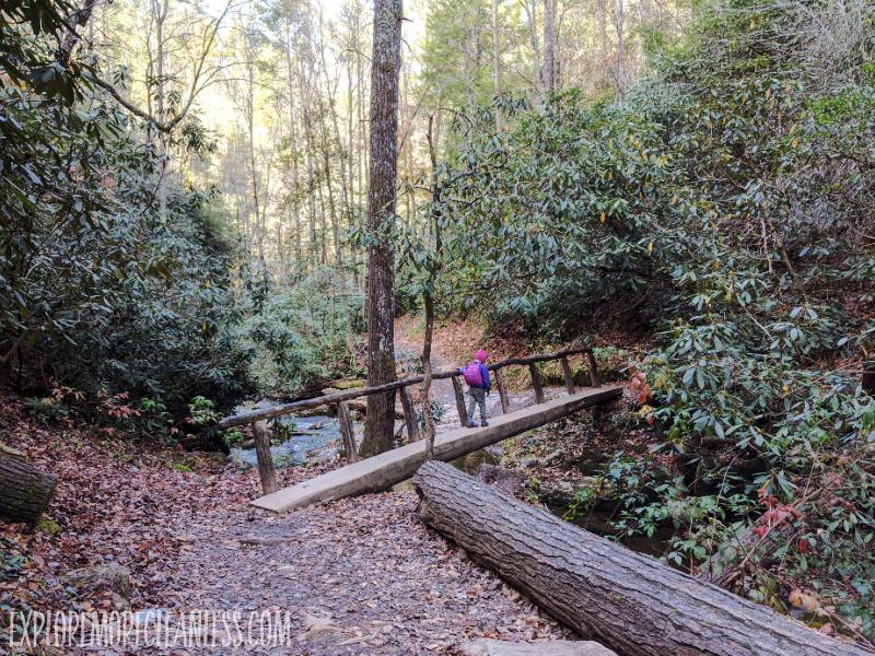 log bridge in smoky mountains
