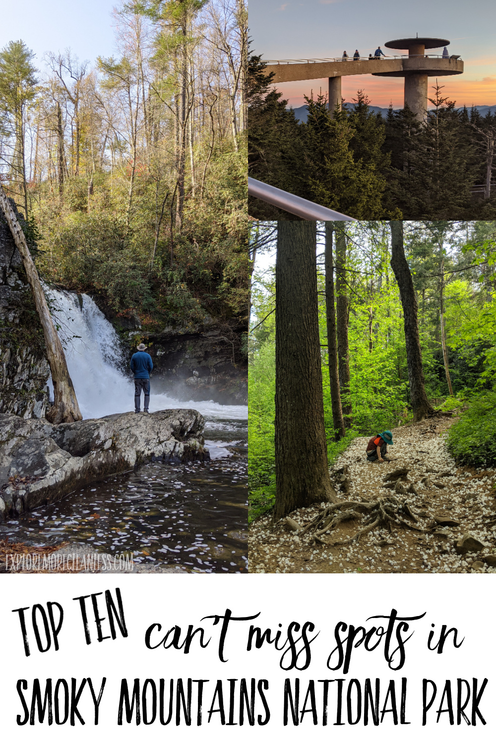 smoky mountains national park tips with kids