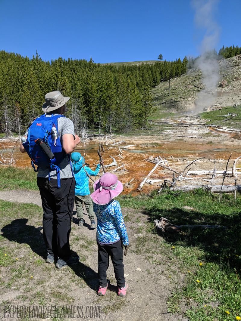 spray geyser yellowstone