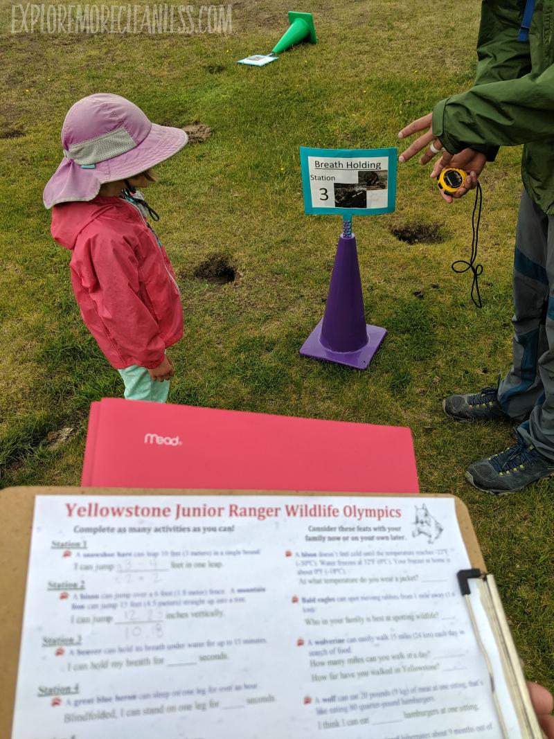 wildlife olympics yellowstone