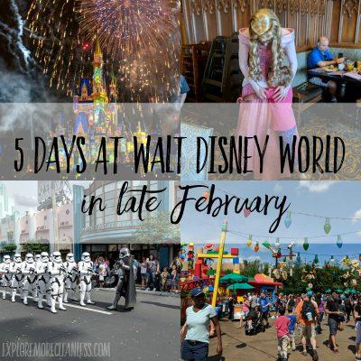 5 day walt disney world itinerary in february (1)