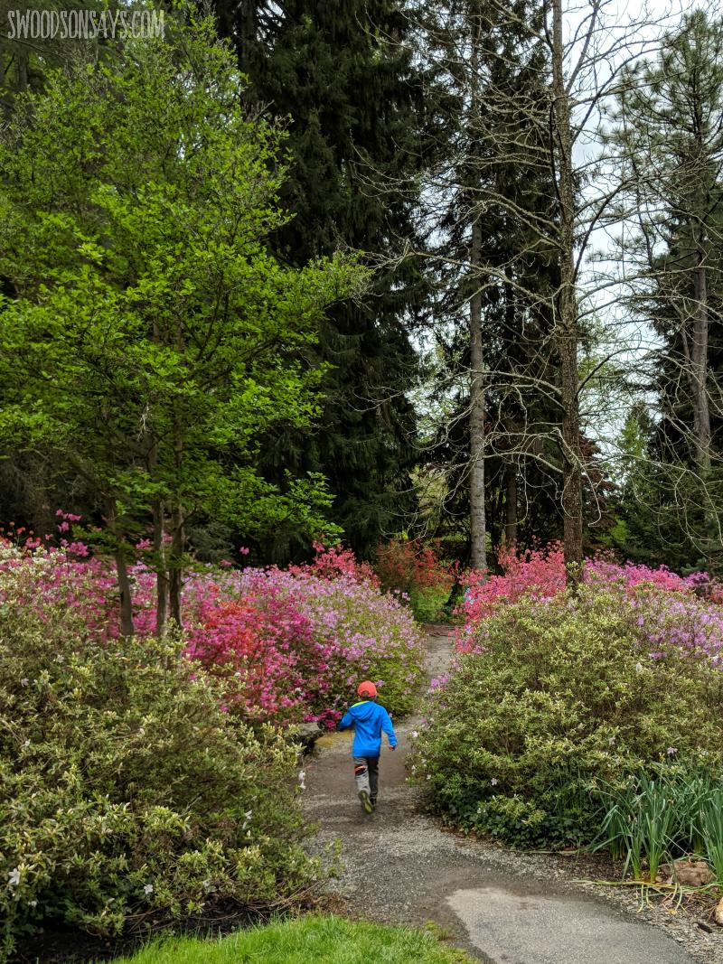 azalea garden biltmore trail