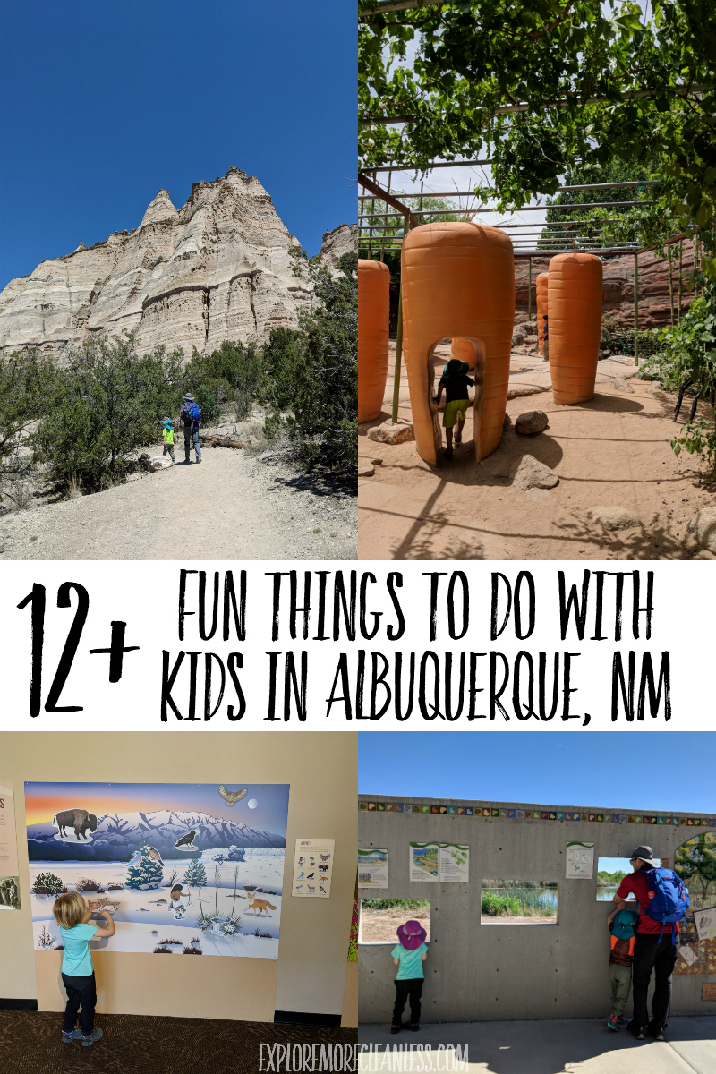 new mexico with kids