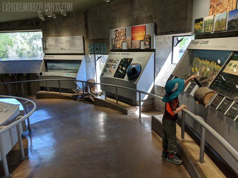 rio grande nature center indoor nature center