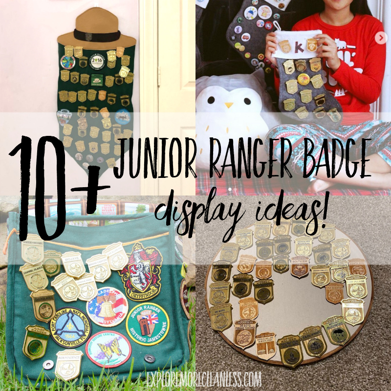 10+ junior ranger badge display ideas